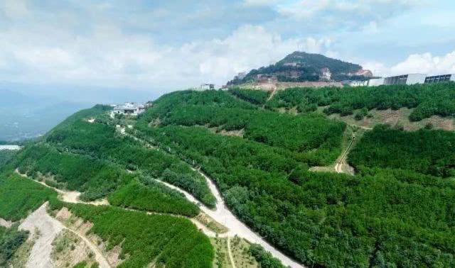 本年度广东省60余座砂石类矿山上榜绿色矿山名单